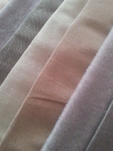 Gris et lin dans Lin et gris 2012-10-06-09.54.581-225x300