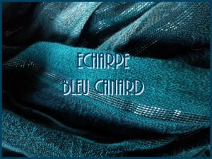 echarpe-bleu-canard-300x225 sac