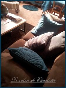 Coussins bleu canard et gris sur mon canapé chocolat